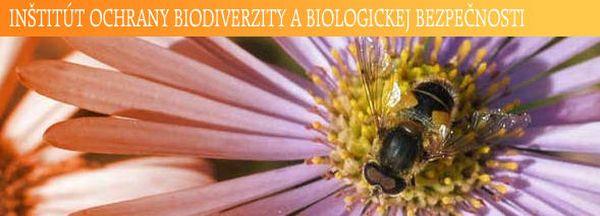 Včelárstvo v rozvoji vidieka, poľnohospodárstva a potravinárstva