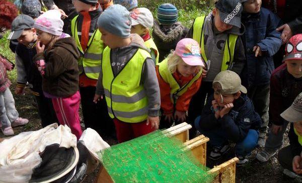 Návšteva včelnice
